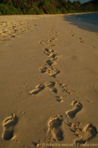 Christliche Lebensberatung: Lebensinn finden, Seelsorge, Coaching, Lebenshilfe