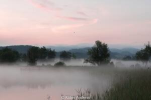 Den Nebel lichten und Gott neu entdecken