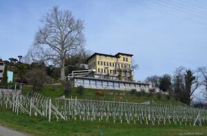 Hotel Paladina, Pura, Tessin